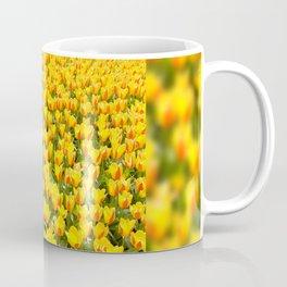 Yellow and red Stresa tulips abloom Coffee Mug