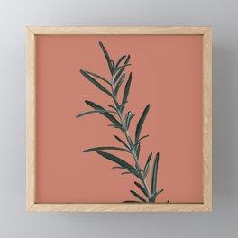 Rosemary  Framed Mini Art Print