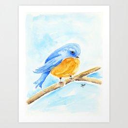 The Chubby Bluebird Art Print