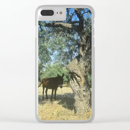 Aftenoon Shade Clear iPhone Case