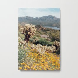 Arizona Mountain Poppies Metal Print