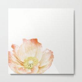 Pink Poppy No. 2 | Floral Art Metal Print