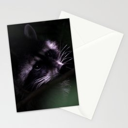 Raccoon in Tree Stationery Cards