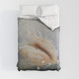 Ocean Shell Conch Comforters