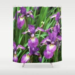 LILAC PURPLE IRIS GARDEN Shower Curtain