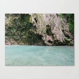 Tumalog Falls, Cebu, Philippines Canvas Print