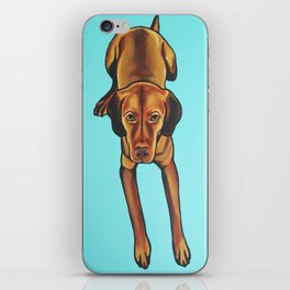 Painting of Vizsla on Turquoise Background iPhone Skin