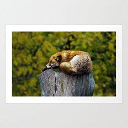 Cozy Spot Art Print