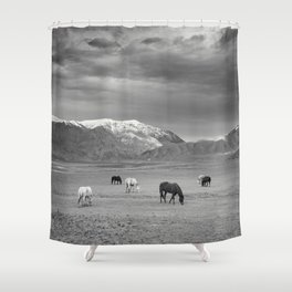 Horses in the Mountains Shower Curtain