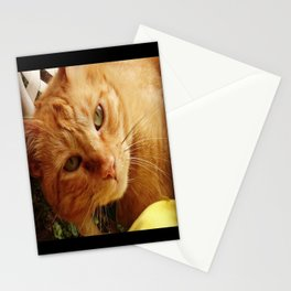 Chester Stationery Cards