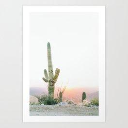 saguaro print, cactus print, botanical print, desert print, desert art, cactus wall art, arizona Art Print