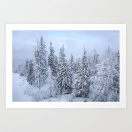 Snowy forest at the White Mountain Art Print