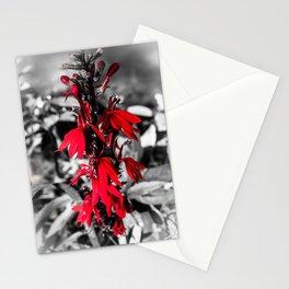 Cardinal Flower Stationery Cards