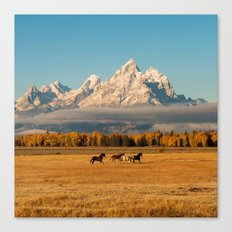 Horses Running in Grand Teton Canvas Print