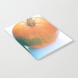 Cheeky Pumpkin Pair Notebook