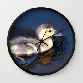 Cute Duckling Swimming in a Pond Wall Clock