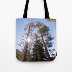 Mountainside Jeffrey Pine Trees (Lower Echo Lake, California) Tote Bag