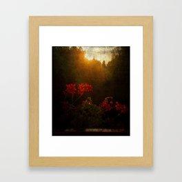 Last Rays of Light Framed Art Print