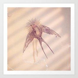 little swallow Art Print