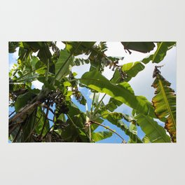 Banana Leaf Canopy Rug