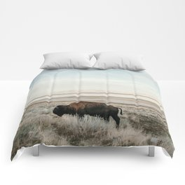 Bison of Antelope ISland Comforters