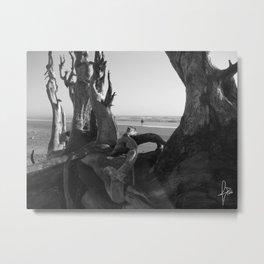 Driftwood Tangle Metal Print