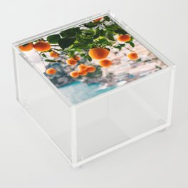 Amalfi Coast Oranges Acrylic Box