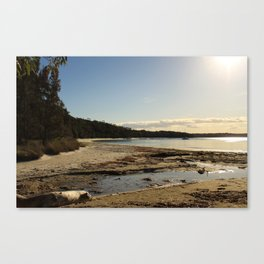 Water tracks Canvas Print