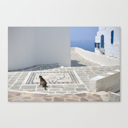 The Cat by The Aegean Sea on Milos Canvas Print