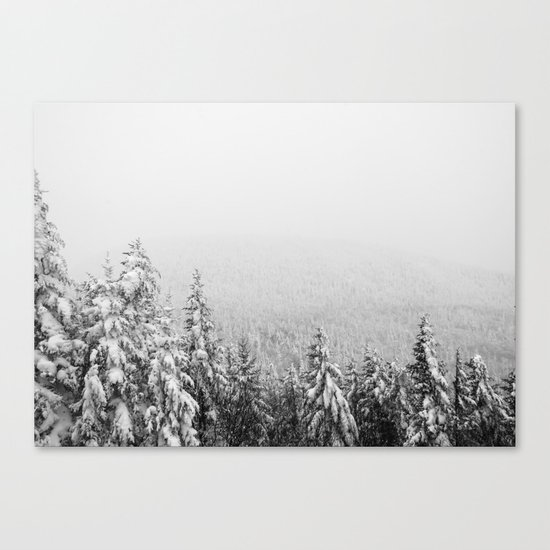 Winter vibes #evergreen #society6 Canvas Print