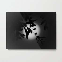 The Elegant Side of the Moon Metal Print