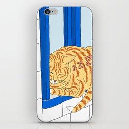 Good Cat's Life iPhone Skin