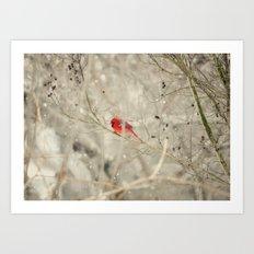 A bird on a winter's day Art Print