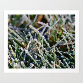 Frosty Morning Dew Art Print
