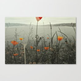 Poppies Shifted Canvas Print