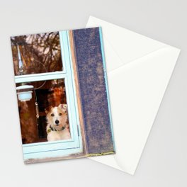 Dog at the window Stationery Cards
