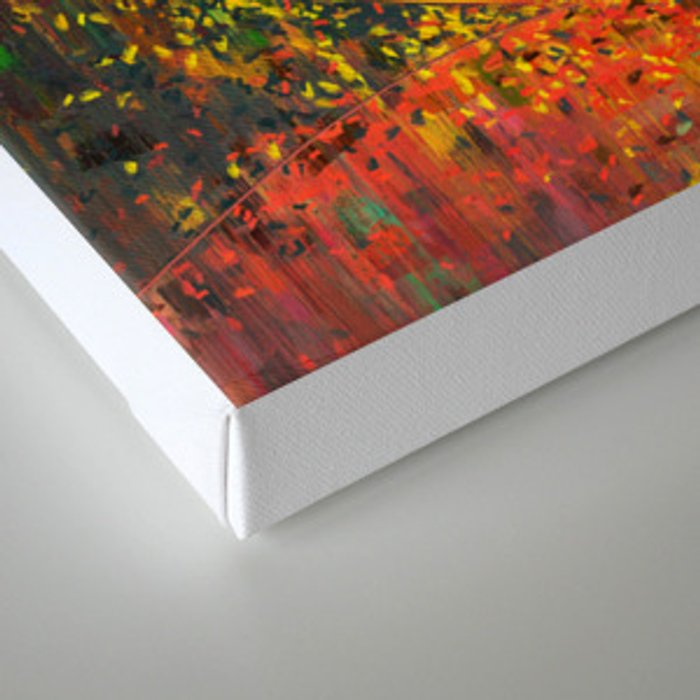 Abstract Curves Canvas Print