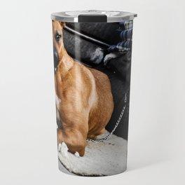 vs Travel Mug