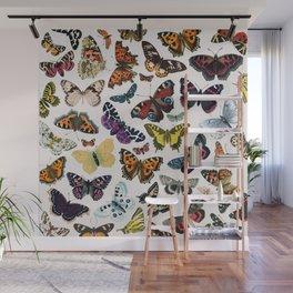 butterfly pattern Wall Mural