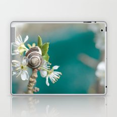 sea snail Laptop & iPad Skin