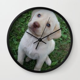 Cutie Pie yellow Lab puppy Wall Clock