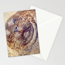 Sleepy Chub Stationery Cards