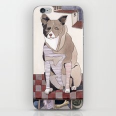 Striped Dog iPhone & iPod Skin