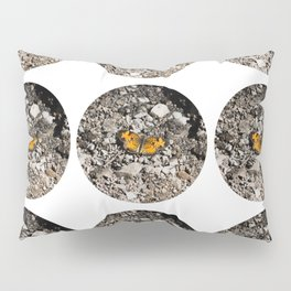 Butterfly Bubbles Pillow Sham