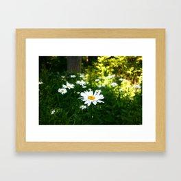 Woodside Framed Art Print