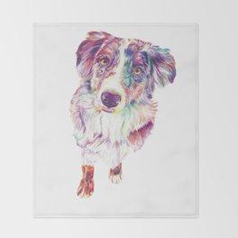 Multicolored Australian Shepherd red merle herding dog Throw Blanket