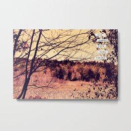 Wide Open Spaces II Metal Print