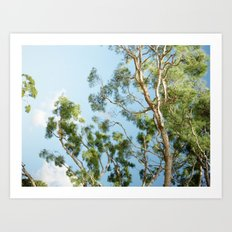 Blue skies are coming Art Print