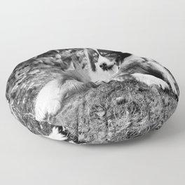 greenland dog Floor Pillow