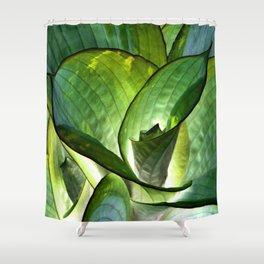 Hosta - Inverted Art Shower Curtain